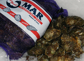 Mar Seafood Blue Point Oysters